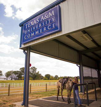 New Equine Arena